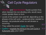 cell cycle regulators