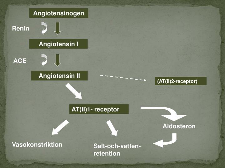 Angiotensinogen