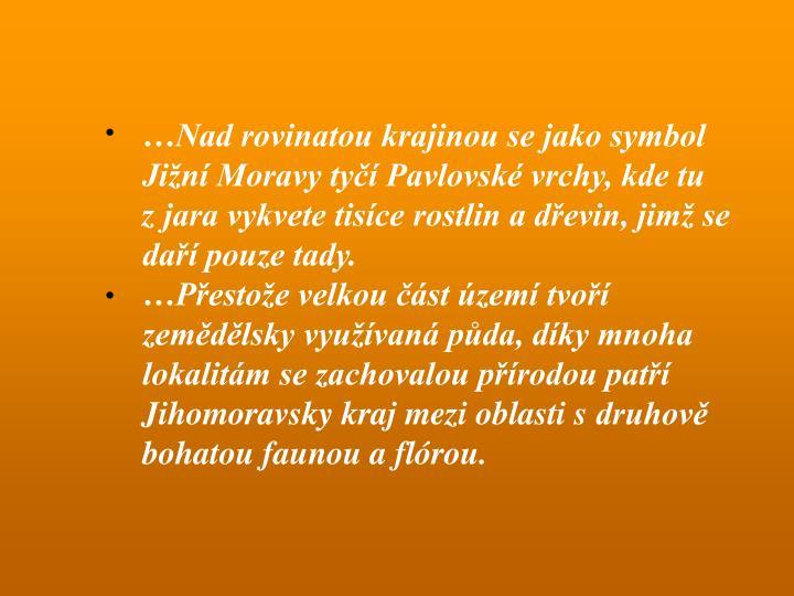 …Nad rovinatou krajinou se jako symbol Jižní Moravy tyčí Pavlovské vrchy, kde tu zjara vykvete tisíce rostlin a dřevin, jimž se daří pouze tady.