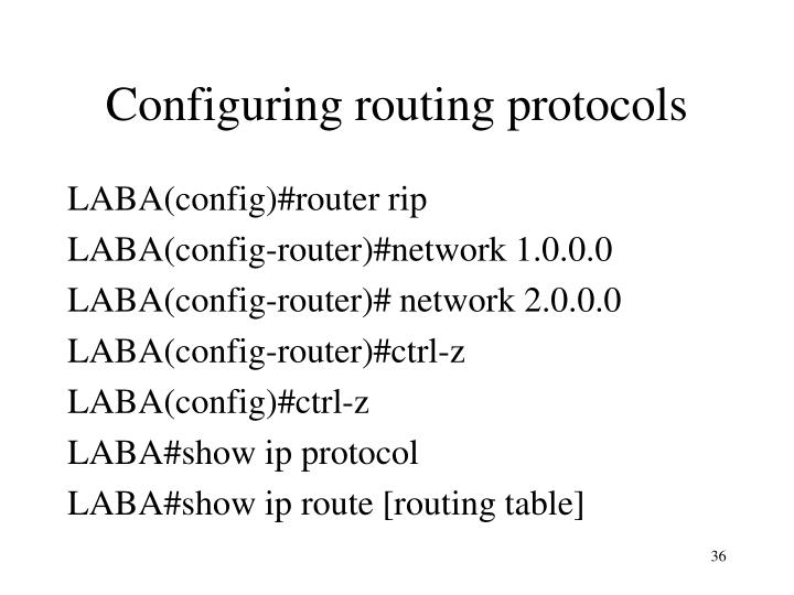 Configuring routing protocols