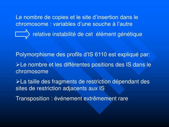 Le nombre de copies et le site d'insertion dans le chromosome : variables d'une souche à l'autre