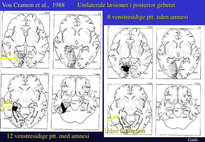 Von Cramon et al.,  1988