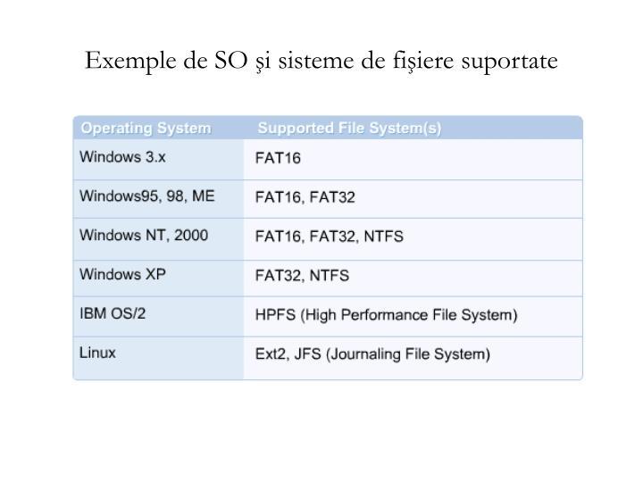 Exemple de SO şi sisteme de fişiere suportate