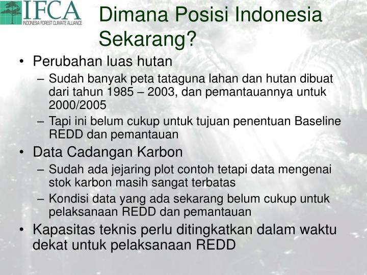 Dimana Posisi Indonesia Sekarang?