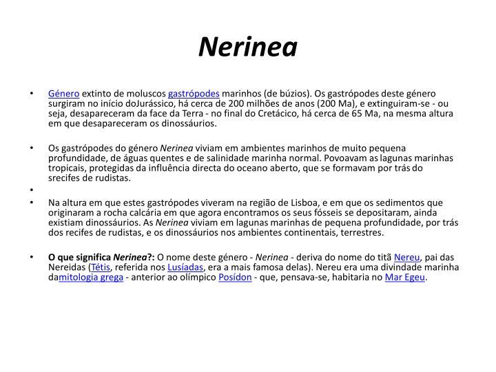 Nerinea