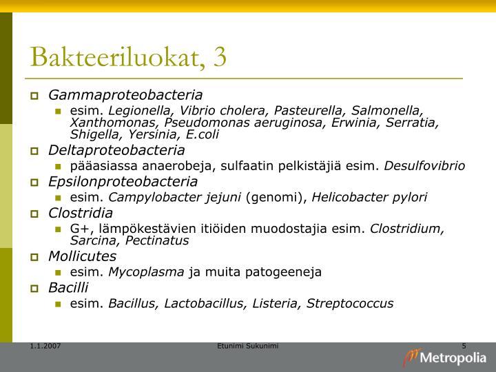 Bakteeriluokat, 3