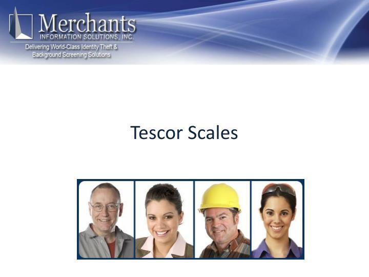 Tescor Scales