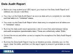 data audit report