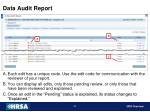 data audit report1