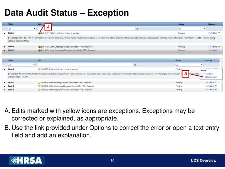 Data Audit Status – Exception