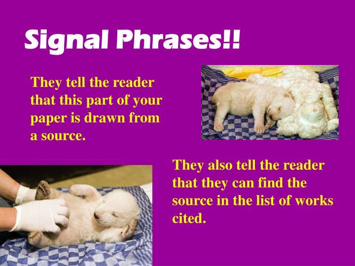 Signal Phrases!!