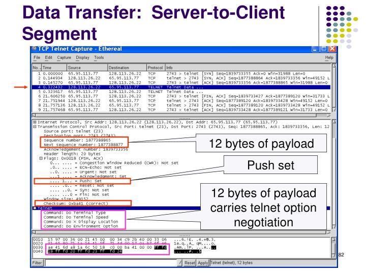 Data Transfer:  Server-to-Client Segment