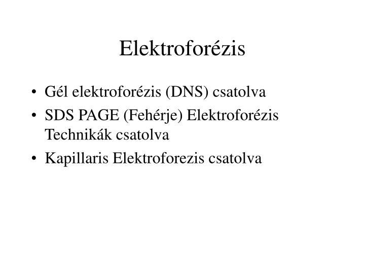 Elektroforézis