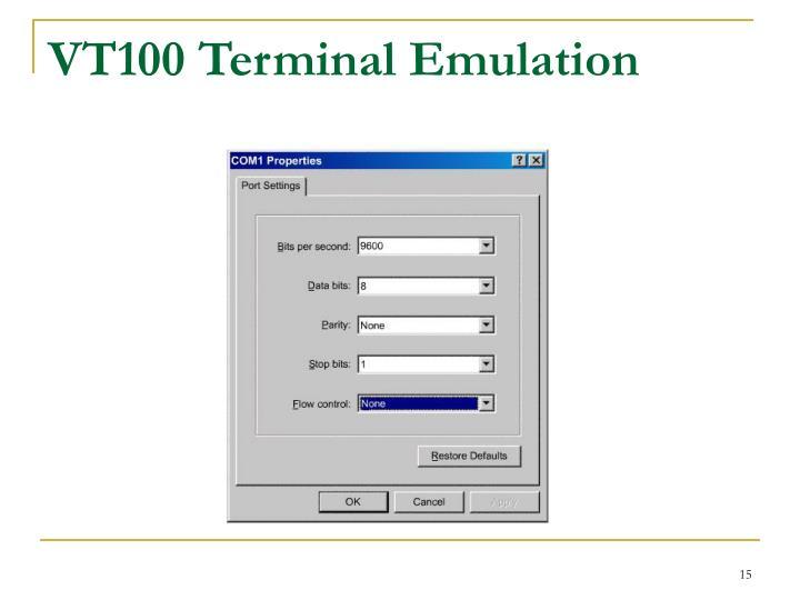 VT100 Terminal Emulation