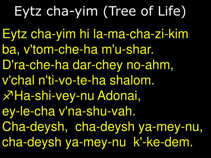 Eytz cha-yim (Tree of Life)