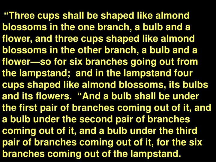 """Three cups shall be shaped like almond blossoms in the one branch, a bulb and a flower, and three cups shaped like almond blossoms in the other branch, a bulb and a flower—so for six branches going out from the lampstand;  and in the lampstand four cups shaped like almond blossoms, its bulbs and its flowers.  ""And a bulb shall be under the first pair of branches coming out of it, and a bulb under the second pair of branches coming out of it, and a bulb under the third pair of branches coming out of it, for the six branches coming out of the lampstand."