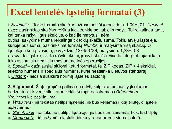 Excel lentelės ląstelių formatai (3)