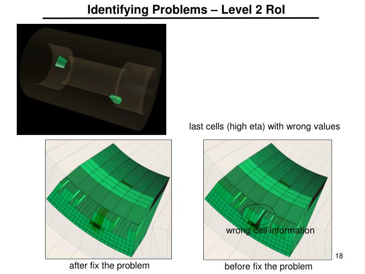 Identifying Problems – Level 2 RoI