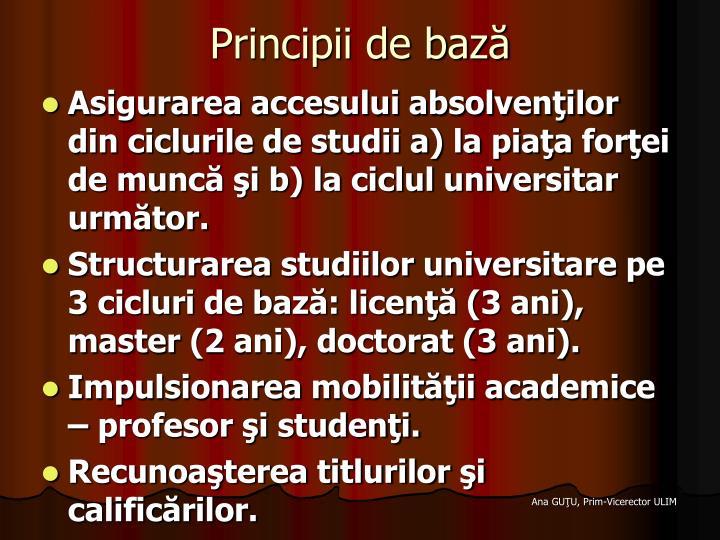 Principii de bază