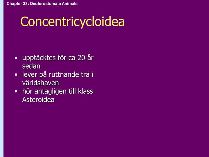 Concentricycloidea