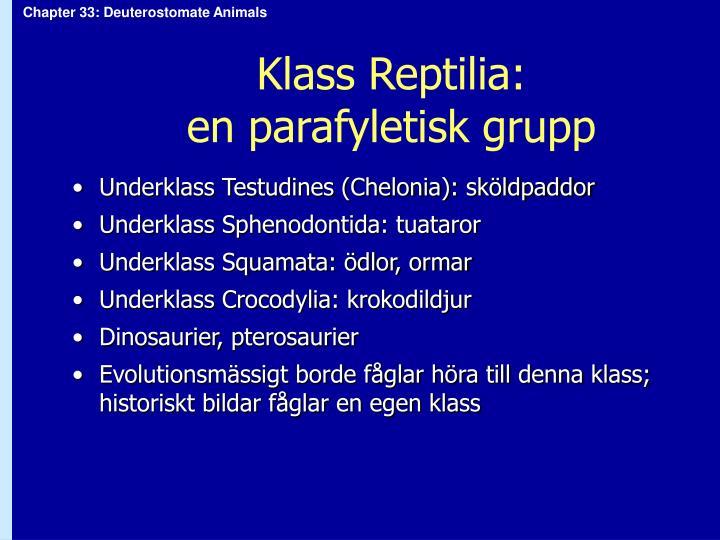 Klass Reptilia: