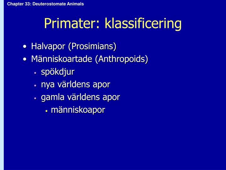 Primater: klassificering