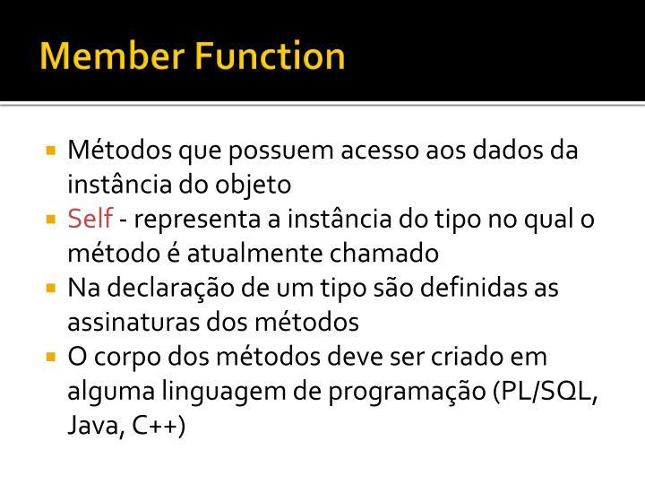 Member Function