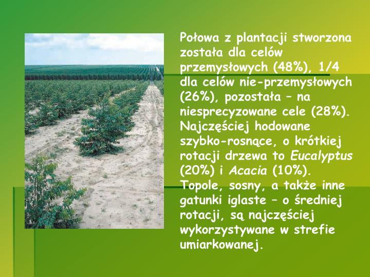 Połowa z plantacji stworzona została dla celów przemysłowych (48%), 1/4 dla celów nie-przemysłowych (26%), pozostała – na niesprecyzowane cele (28%). Najczęściej hodowane szybko-rosnące, o krótkiej rotacji drzewa to