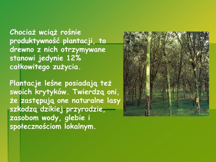 Chociaż wciąż rośnie produktywność plantacji, to drewno z nich otrzymywane stanowi jedynie 12% całkowitego zużycia.