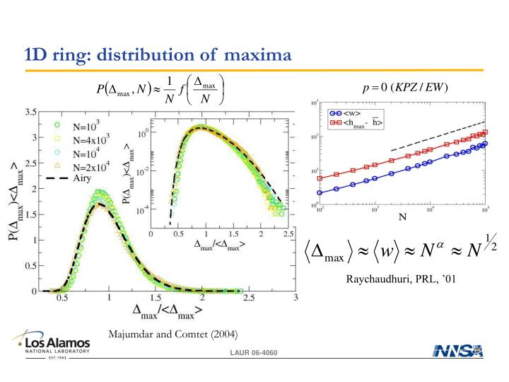 1D ring: distribution of maxima