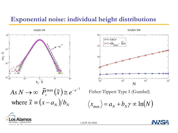 Exponential noise: individual height distributions