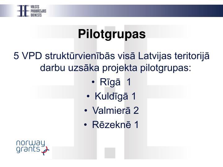 Pilotgrupas
