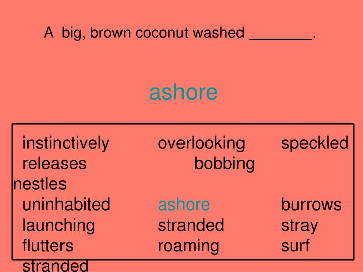 A  big, brown coconut washed