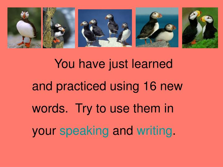 You have just learned and practiced using 16 new words.  Try to use them in your