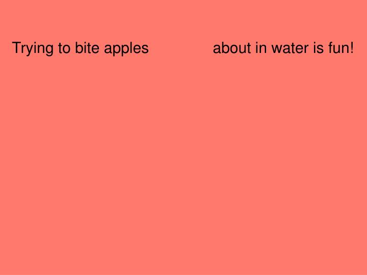 Trying to bite apples               about in water is fun!