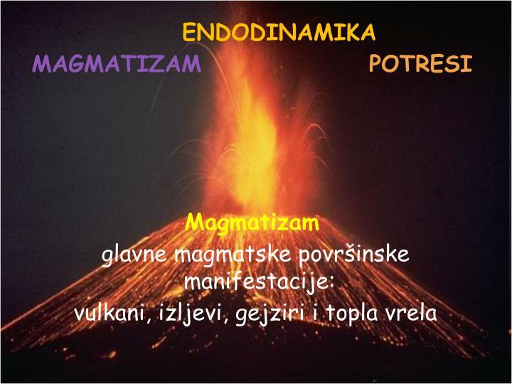 ENDODINAMIKA