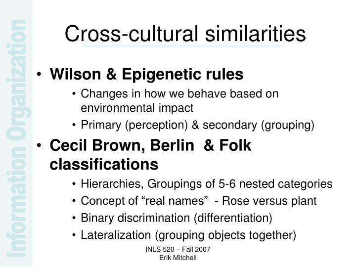 Cross-cultural similarities