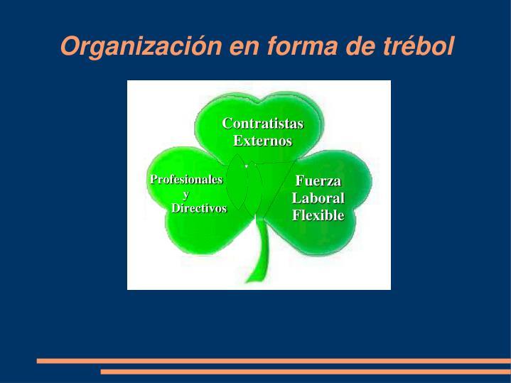 Organización en forma de trébol