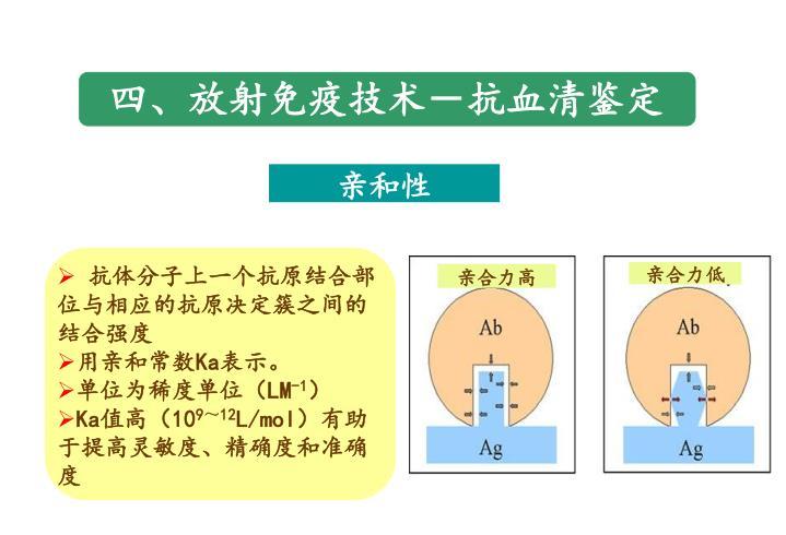 四、放射免疫技术-抗血清鉴定