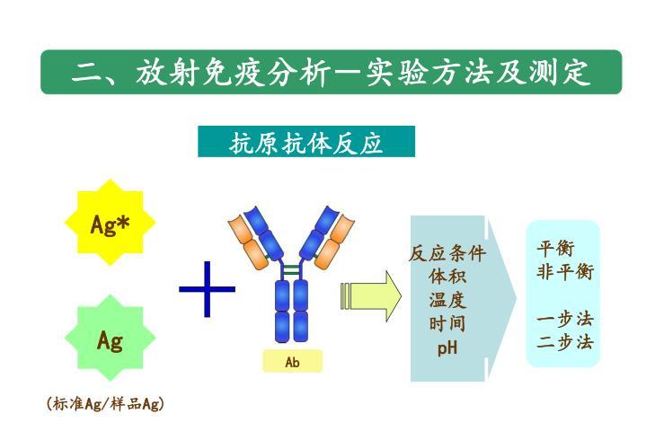 二、放射免疫分析-实验方法及测定