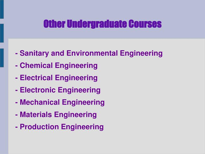 Other Undergraduate Courses