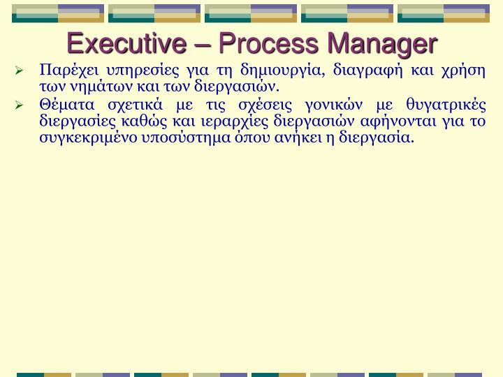 Executive – Process Manager