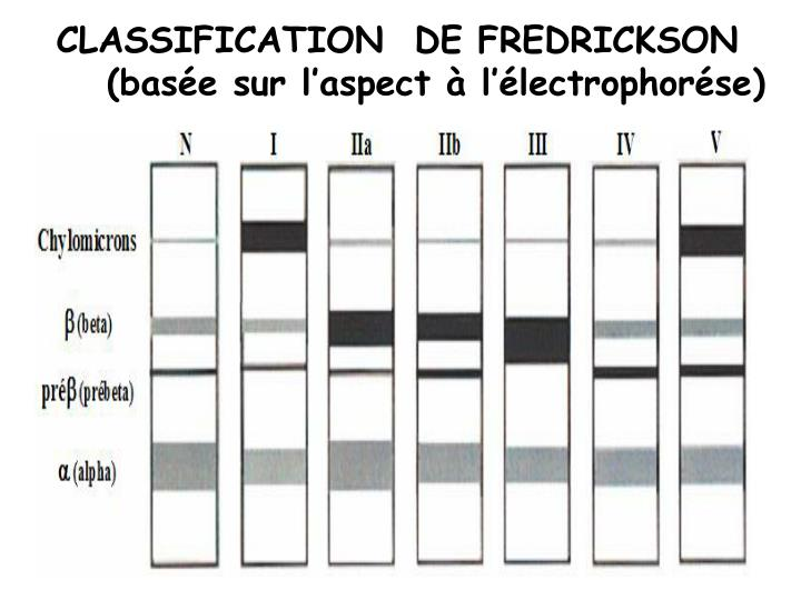 CLASSIFICATION  DE FREDRICKSON