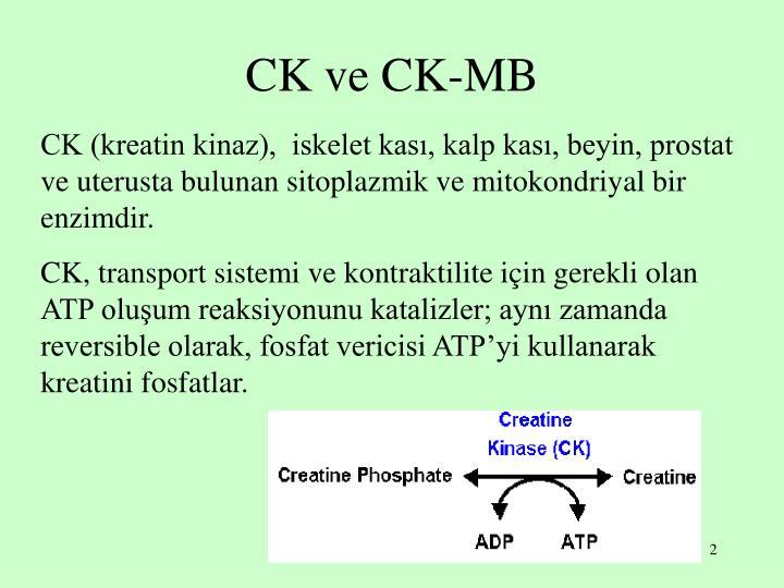 CK ve CK-MB