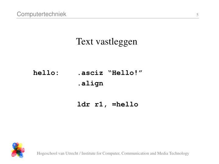 Text vastleggen