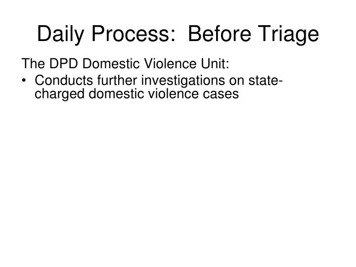 The DPD Domestic Violence Unit: