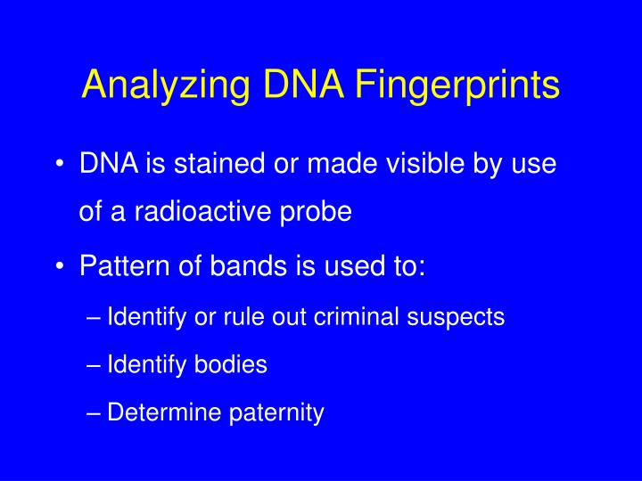 Analyzing DNA Fingerprints