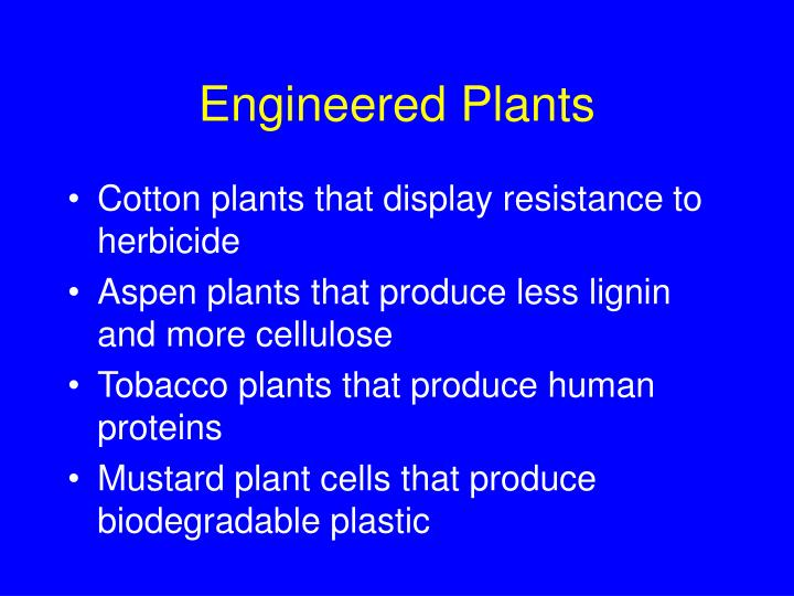 Engineered Plants