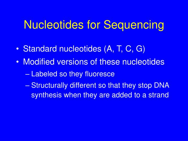 Nucleotides for Sequencing