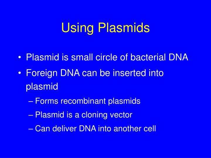 Using Plasmids